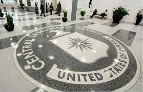 CIA offers a Job with the annual Salary of $ 161.900 if you know Bosnian Language